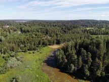 Tontti järveltäpäin kuvattuna, vaalean alueen vasemmalla puolella.