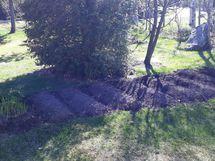 Pikku puutarha