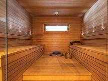Ainavalmis kiuas saunassa
