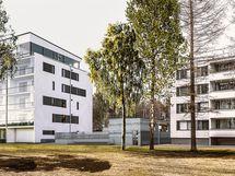 Visualisointikuvassa taiteilijan näkemys Wärtön julkisivusta Värtönpuistosta