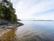 Kovapohjainen ranta