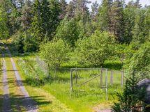 Puutarha - Ingärdad trädgård