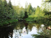 Naavasjoki