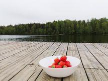Kuusijärven ulkoilualueelle on noin 10 minuutin matka.