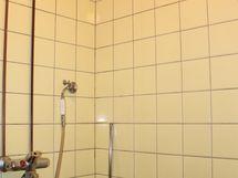 Kylpyhuoneen suihkunurkkaus.