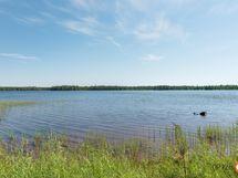 Isolaamasen järvi