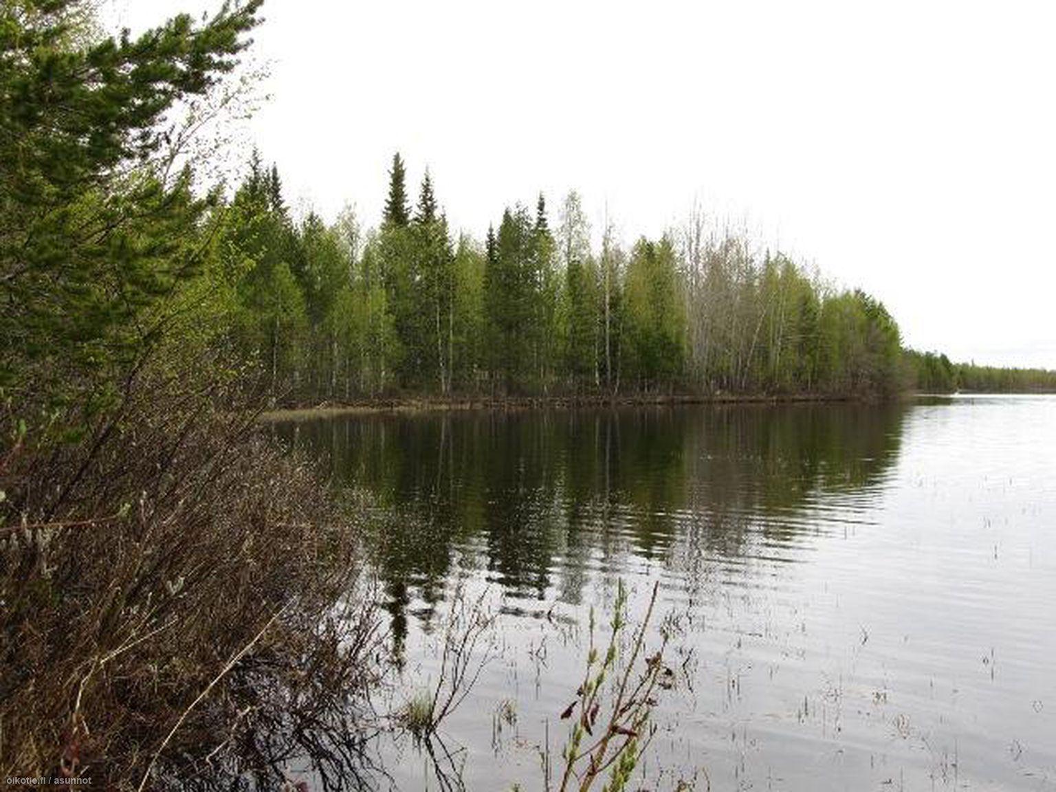 Myytävät Metsätilat Kemijärvi