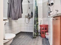 Mukavan kokoinen kylpyhuone/wc