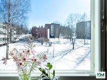 Näkymä ikkunoista