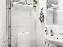 Erillinen wc remontoitu LVIS-saneerauksen yhteydessä