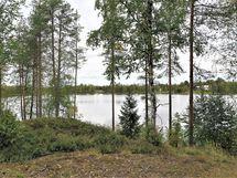Rytinkijärvi