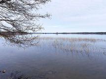 Kiinteistöllä venevalkamaoikeus läheiseen Huhmarin yhteisrantaan, jossa on uimaranta ja venepaikkoja