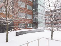 Asunto, maantasoparveke ja terassi / patio pihan puolelta