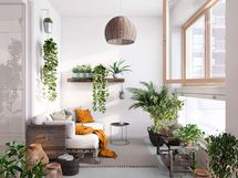 Viherhuoneessa on runsaasti tilaa kasveille