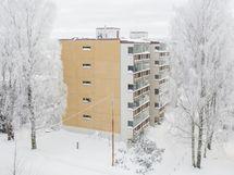 Julkisivu talvella