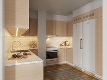Visualisointikuvassa taiteilijan näkemys 69,0 m2 asunnosta muutostöillä toteutettuna.