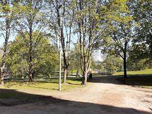 ikkunanäkymä Kaisaniemen puistoon