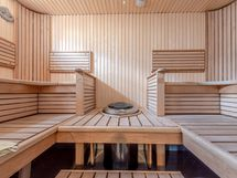 Muotolautein varustettu sauna