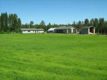 Myytävän määräalan rakennukset ja peltoa