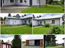 Talon kesäkuvia ja osin pihapiiriä