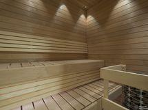 Huoneiston hyväkuntoinen sauna
