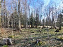 Pientä metsänhakkuuta ollut tontilla. Voi istuttaa uusi ataimia.