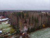 Tontti Mikonahontien päästä, Pikkaraisenkylästä.