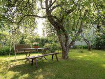 Omenpuun alla on pihan paras paikka päiväkahveille!