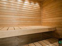 Uusitussa saunasa Harvian kivipilari kiuas