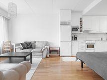 Olohuone ja keittiönäkymä