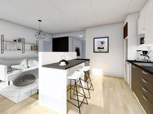 Yleiskuva 43 m² asunnosta, musta sisustusmaailma