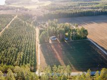 Pohjoisen suunnasta, vasemmalla taimitarhaa, alla naapurin viljelty pelto, oikealla naapuri