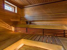 Ikkunallisessa saunassa Pikkutonttu kiuas