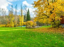Piha-aluetta syksyllä