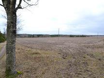 Näkymää Terttiläntien suuntaan