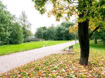 Puolen kilometrin päässä sijaitseva Kauppalanpuisto on yksi lähialueen lukuisista puistoista.