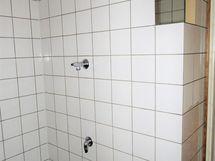 Kylpyhuoneessa pesukonevalmius