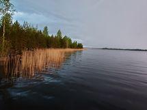 Talasniemen rantaa