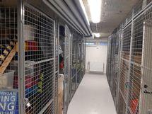 Samalla uusittiin myös huoneistokohtaiset irtaimistovarastot.