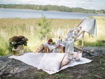 Shampanjakalliot ilta-auringon pikniköintiin