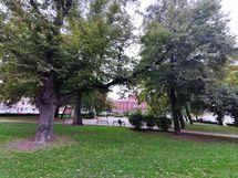 Puisto Kruununhaassa