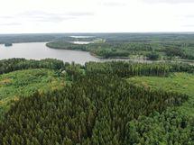 Näkymä saaren pohjoisosasta kuvattuna