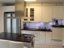Remontoitu tyylikäs keittiö