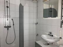 Siisti kylpyhuone, pesukoneelle oma paikka