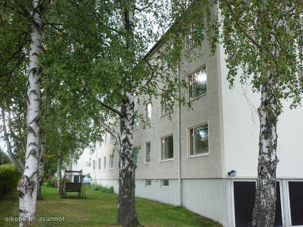 Hippoksenkatu Tampere