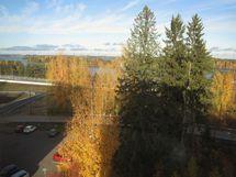 maisema Haukivedelle olohuoneen ikkunasta