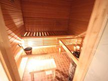Sauna, tervaleppää