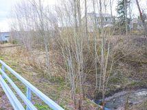 tontin vieressä virtaa pieni puro