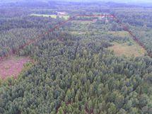 Kiinteistöön kuuluu metsämaata noin 17 ha