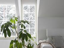 Kauniit ikkunat tuovat valoa tilaan.